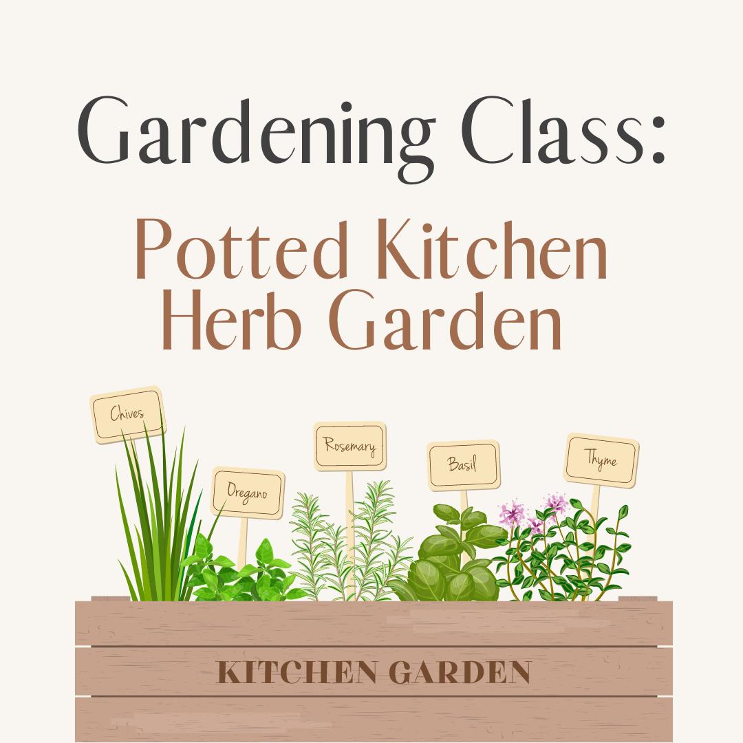 Gardening Class: Potted Kitchen Herb Garden