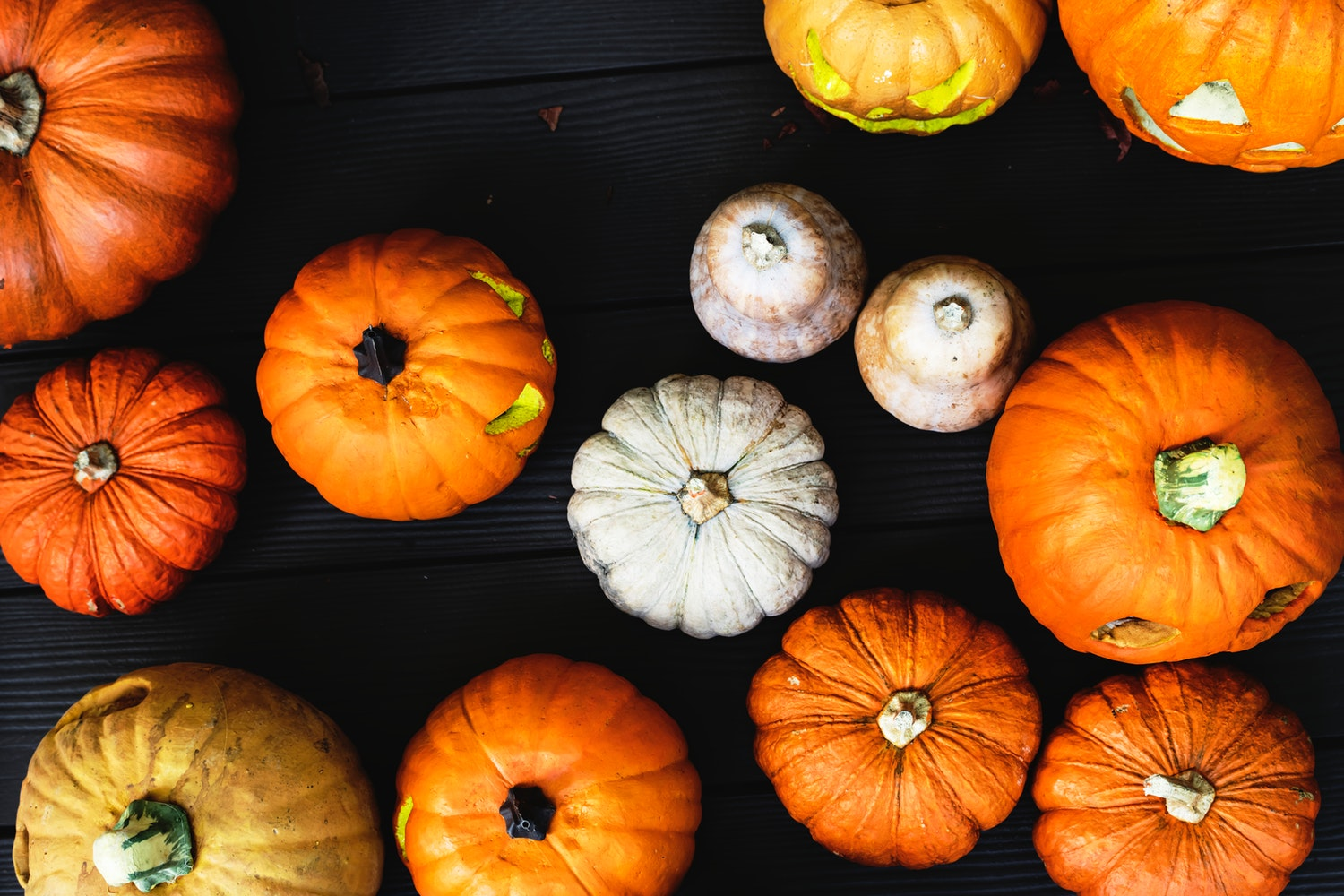 Pumpkin Painting Contest Is One Month Away!